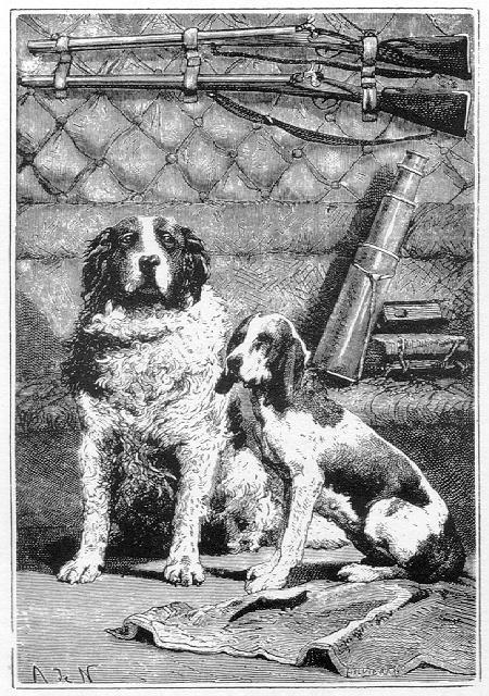 Los perros, Diana y Satélite