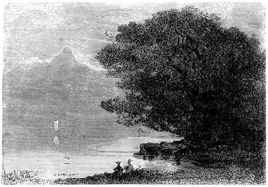 Lord Glenarvan y Lady Elena vivían felices en Malcolm Castle en medio de aquella soberbia y salvaje naturaleza