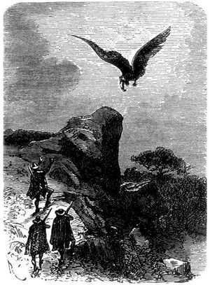 La enorme ave se acercaba.