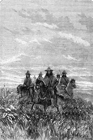 Los caballos marchaban a buen paso entre la paja brava.