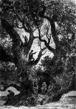 En aquel momento bajaron los cazadores de la cima del árbol.